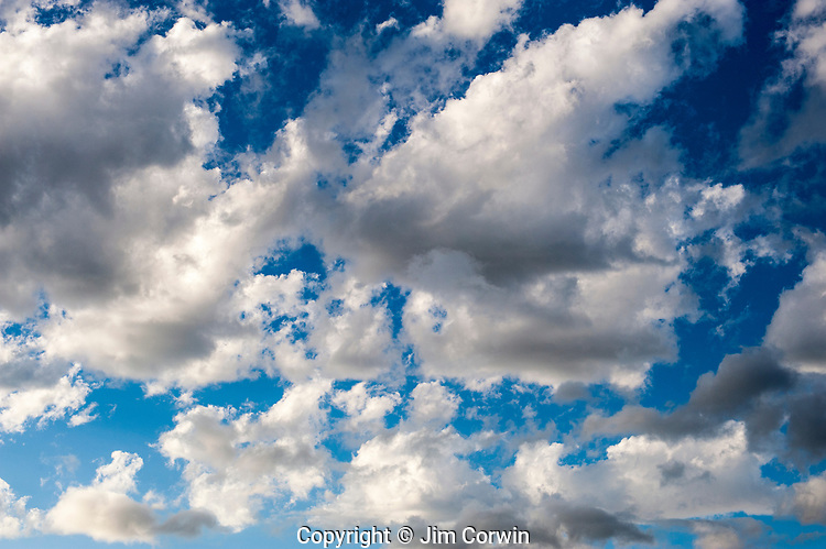 Cumulus fractus Ccouds with blue sky, fair weather clouds