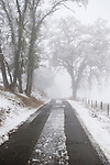 A country road through the winter snow-covered oaks and hills in the Sierra Nevada Foothills of Calif.