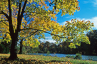 Autumn landscape, fall colors, Strawbridge Lake, New Jersey