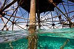 Alligator Lighthouse, Islamorada, Florida
