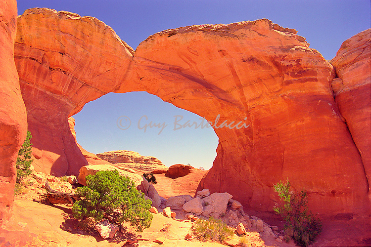 Arches in Moab