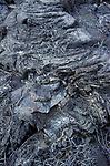Old Lava Tubes, Galapagos Islands, pahoehoe, is basaltic lava that has a smooth, billowy, undulating, or ropy surface. These surface features are due to the movement of very fluid lava under a congealing surface crust