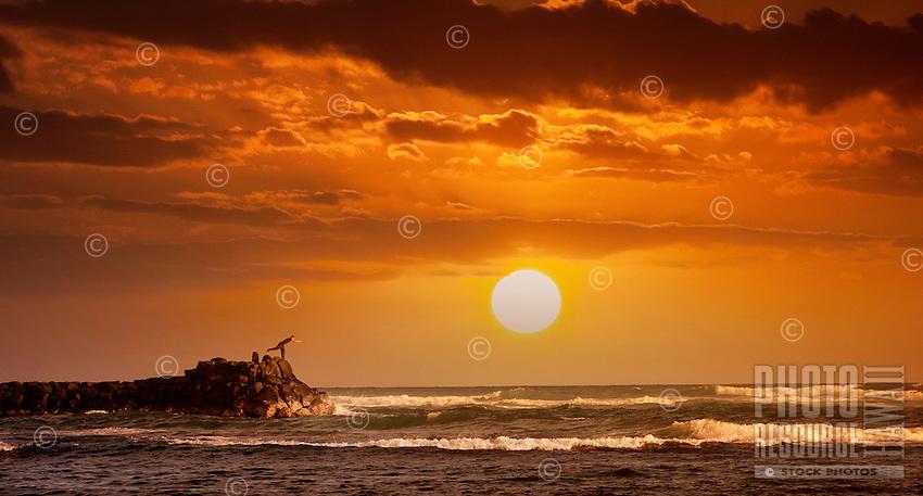 Man enjoying Yoga at sunset.