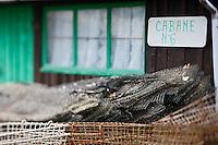 Europe/France/Aquitaine/33/Gironde/Bassin d'Arcachon/La Teste de Buch: Port ostréicole -détail cabanon d'un ostréiculteur