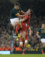 141129 Wales v South Africa