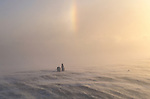 Two polar bears on ice with a sundog in the clouds above them.<br /> Canada