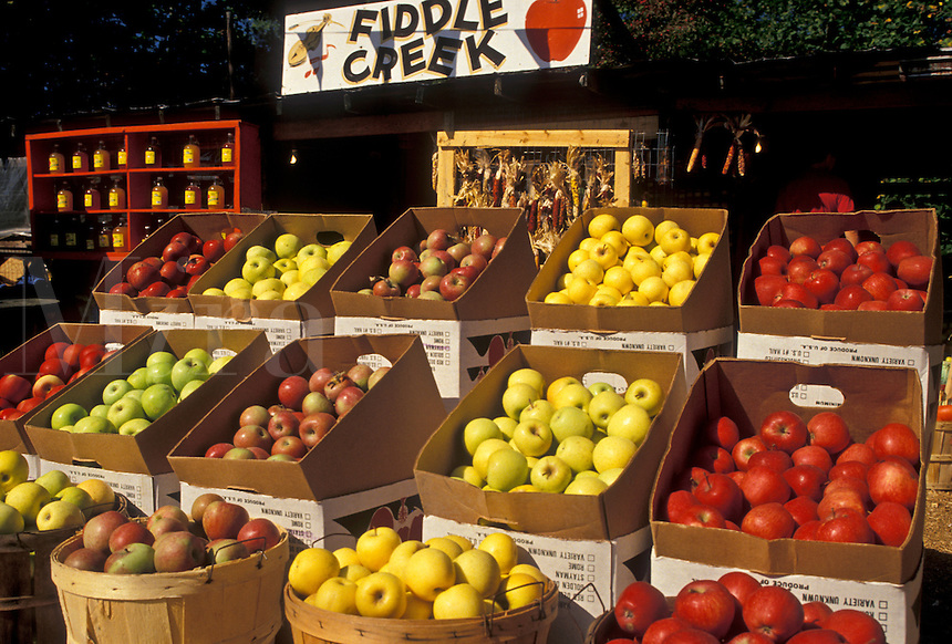 AJ4106, apples, outdoor market, North Georgia, Appalachian Mountains, Fruit stand at Fiddle Creek outdoor market in the state of Georgia.