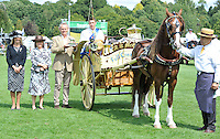 03.8.14 The British Horse Society Light Trade and Costers Turnout Championship
