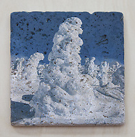 """6""""x6"""" Tumbled Marble JDN Photography """"Art On Stone"""""""