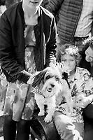 Hughes-Schwartz Family