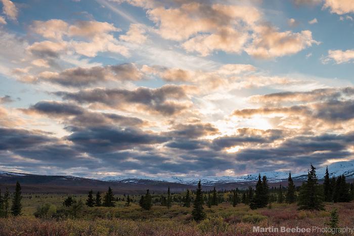 Sun setting over the tundra, fall, Denali National Park, Alaska