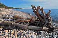 Driftwood along Pebble Beach on Lake Superior<br /> Marathon<br /> Ontario<br /> Canada