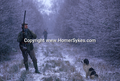 Pheasant Shooting Lancashire, UK.  Gun shooter. The English Season published by Pavilon Books 1987
