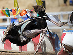 Jockey David Baxley bails off his ostrich ride as it crashes into the center divider during an ostrich race at media day at the 54th International Camel Races in Virginia City, Nev., on Friday, Sept. 6, 2013.  Both were uninjured.<br /> Photo by Cathleen Allison