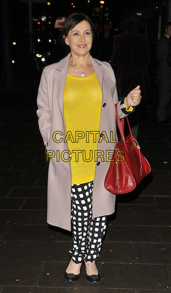 LONDON, ENGLAND - FEBRUARY 24: Arlene Phillips attends the &quot;The A-Z of Mrs P&quot; press night, Southwark Playhouse Theatre, Newington Causeway, on Monday February 24, 2014 in London, England, UK.<br /> CAP/CAN<br /> &copy;Can Nguyen/Capital Pictures