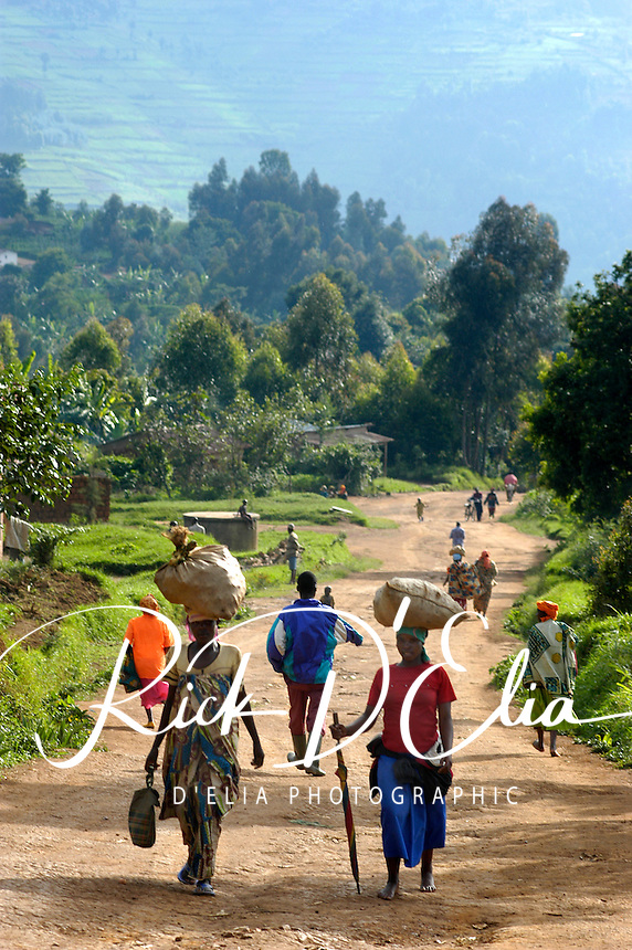 Life marches on in the morning and evening of the rural town of Bungwe, Rwanda, three kilometers from the Ugandan border. (Rick D'Elia)