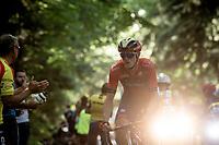 Rohan Dennis (AUS/Bahrein-Merida)<br /> <br /> Stage 5: Saint-Dié-des-Vosges to Colmar(175km)<br /> 106th Tour de France 2019 (2.UWT)<br /> <br /> ©kramon