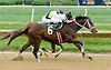 Husky winning at Delaware Park on 9/29/12
