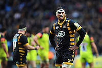 Nathan Hughes of Wasps looks on during a break in play. Aviva Premiership match, between Wasps and Leicester Tigers on January 8, 2017 at the Ricoh Arena in Coventry, England. Photo by: Patrick Khachfe / JMP