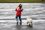 Stock photo of a Little girl walking a Maltese dog on the street in a rainy weather