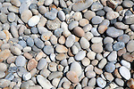 Close up rounded pebbles on shingle beach, Chesil Beach, Chiswell, Isle of Portland, Dorset, England, UK