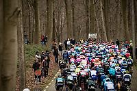 peloton up La Houppe<br /> <br /> 72nd Kuurne-Brussel-Kuurne 2020 (1.Pro)<br /> Kuurne to Kuurne (BEL): 201km<br /> <br /> ©kramon