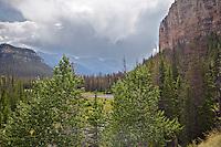 Thunderstorm, Sunlight Basin, Cody Wyoming