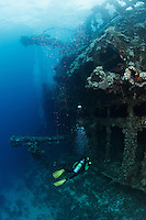 RJ41492-D. scuba diver (model released)  prepares to look inside the Gosei Maru shipwreck, at rest on its port side. A 1900 ton freighter, now at rest on port side between 10 and 100 feet deep. Truk (Chuuk) Lagoon, Micronesia, Pacific Ocean.<br /> Photo Copyright &copy; Brandon Cole. All rights reserved worldwide.  www.brandoncole.com