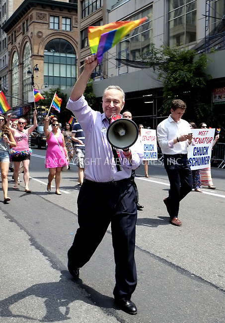 WWW.ACEPIXS.COM<br /> <br /> April 30 2013, New York City<br /> <br /> New York State Senator Chuck Schumer at The March during NYC Pride 2013 on June 30, 2013 in New York City.<br /> <br /> <br /> By Line: Curtis Means/ACE Pictures<br /> <br /> <br /> ACE Pictures, Inc.<br /> tel: 646 769 0430<br /> Email: info@acepixs.com<br /> www.acepixs.com