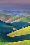 First light of morning on green hills in spring, Tassajara Region, Contra Costa County, CALIFORNIA