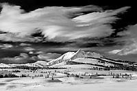 A Yellowstone National Park winter scene.