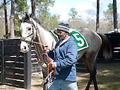 1st Training Flat - Hiwasee Gem