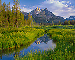 Sawtooth National Recreation Area, ID<br /> Mount McGown reflecting in still waters of a wetland area in evening light