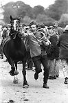 Appleby in Westmorland Horse fair Cumbria. 1981 Gypsy man showing a horse thats up for sale. 1981