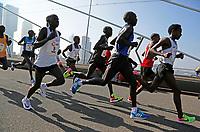 Nederland  Rotterdam  2017 04 09.  De Marathon van Rotterdam. Deelnemers rennen over de Erasmusbrug. Kopgroep.   Berlinda van Dam / Hollandse Hoogte