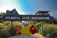 CDT- Atlantic City Aquarium, Atlantic City, NJ 9 13