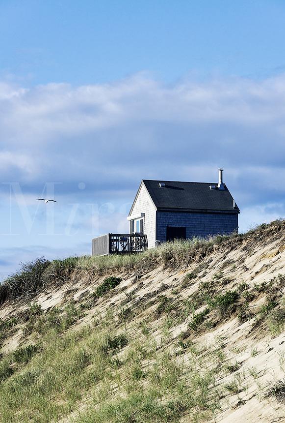 Coastal beach cottage, Wellfleet, Cape Cod, Massachusetts, USA