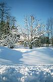 SWEDEN, Swedish Lapland, Wonder Snowy Landscape