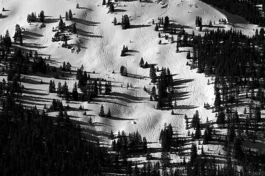 Ski tracks cut through the powder and trees of the Loveland Pass basin, Colorado.