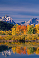Aspens at Oxbow Bend<br />