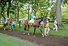 True Feelings before The Walking in Da Sun Stakes at Delaware Park on 7/11/12