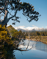Five Mile Creek near Okarito, Westland Tai Poutini National Park, West Coast, South Westland, UNESCO World Heritage Area, New Zealand, NZ