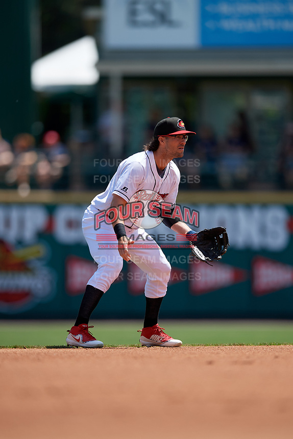 Rochester Red Wings shortstop Drew Maggi (5) during an International League game against the Scranton/Wilkes-Barre RailRiders on June 25, 2019 at Frontier Field in Rochester, New York.  Rochester defeated Scranton 10-9.  (Mike Janes/Four Seam Images)