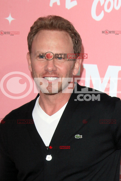 Ian Ziering at Jennie Garth's 40th birthday celebration and premiere party for 'Jennie Garth: A Little Bit Country' at The London Hotel on April 19, 2012 in West Hollywood, California Credit: mpi20/MediaPunch Inc.