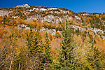 Autumn in Grafton Notch State Park, ME, USA