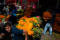 A Mexican flower market vendor pulls a cart piled with marigold flowers (Flor de muertos) for Day of the Dead festivities in Mexico City, Mexico, 31 October 2016. Marigold flowers (Cempasúchil) are used to adorn graves and altars during the Day of the Dead (Día de Muertos). A syncretic religious holiday, combining the death veneration rituals of the ancient Aztec culture with the Catholic practice, is celebrated throughout all Mexico. Based on the belief that the souls of the departed may come back to this world on that day, people gather at the gravesites in cemeteries, praying, drinking and playing music, to joyfully remember friends or family members who have died and to support their souls on the spiritual journey.