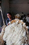 Cotton being milled in Warangal, India