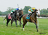 Artie's Flight winning at Delaware Park on 8/20/14