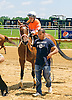 Pie Baby Pie winning at Delaware Park on 6/25/16