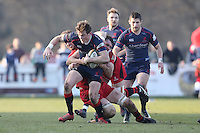 Peter Lydon of London Scottish looks for a way through during the Greene King IPA Championship match between London Scottish Football Club and Jersey at Richmond Athletic Ground, Richmond, United Kingdom on 18 February 2017. Photo by David Horn / PRiME Media Images.